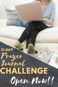 The 21 Day Prayer Journal Challenge. Open Now at The Modern Mary!!